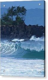 Waimea Shorebreak Acrylic Print by Stan and Anne Foster