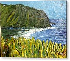 Waipio Valley Bay, Hawaii Acrylic Print