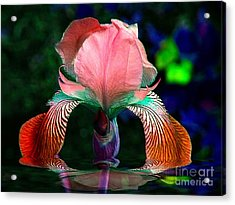 Acrylic Print featuring the photograph Waiting by Elfriede Fulda