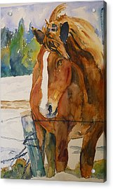 Acrylic Print featuring the painting Waiting For A Friend by P Maure Bausch