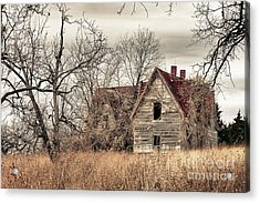 Waiting For New Owners Acrylic Print by E Mac MacKay
