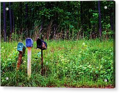 Waiting For The Mail Acrylic Print by Beverly Hammond