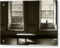 Waiting For The Master Acrylic Print by Ron Jones