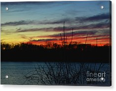 Waiting For The Sun Acrylic Print by Robyn King