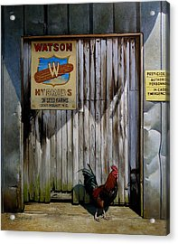 Waiting For Watson 2 Acrylic Print by Doug Strickland