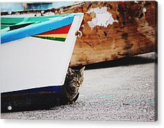 Acrylic Print featuring the photograph Waiting  by Martina Uras