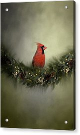 Waiting On Christmas Acrylic Print by Jai Johnson