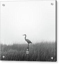 Waiting On The Fog To Clear Acrylic Print