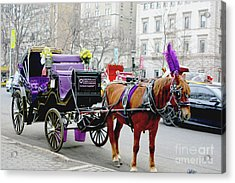 Acrylic Print featuring the photograph Waiting by Sandy Moulder