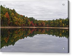Walden Pond Fall Foliage Concord Ma Reflection Trees Acrylic Print