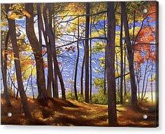 Walden Pond IIi Acrylic Print by Art Chartow
