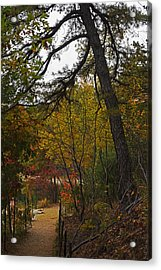 Walden Pond Path Into The Forest 2 Acrylic Print by Toby McGuire