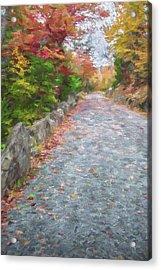 Walk Along II Acrylic Print by Jon Glaser