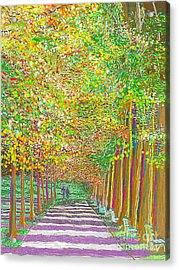 Acrylic Print featuring the painting Walk In Park Cathedral by Hidden Mountain