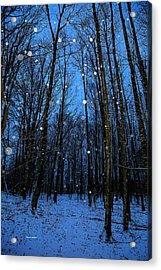 Walk In The Snowy Woods Acrylic Print