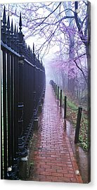 Walk Into The Light Acrylic Print