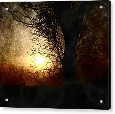 Walk Quietly Into The Night With Me. Acrylic Print by Julie Lueders