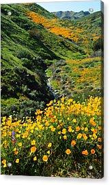 Walker Canyon Vista Acrylic Print by Glenn McCarthy Art and Photography