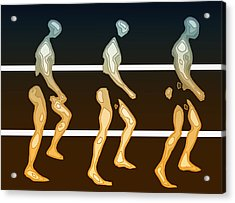 Walking In Line Acrylic Print by Joaquin Abella