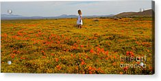 Walking In Poppies Acrylic Print