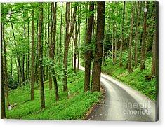 Walking On A Country Road - Appalachian Mountain Backroad Acrylic Print by Matt Tilghman