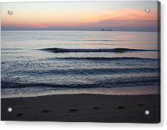 Acrylic Print featuring the photograph Walking On Shore by Eric Christopher Jackson