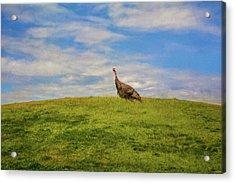Walking On Top Of The World Acrylic Print