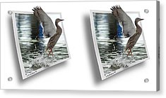 Walking On Water - Gently Cross Your Eyes And Focus On The Middle Image Acrylic Print by Brian Wallace