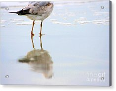 Land Sea And Sky Series Walking On Water Acrylic Print by Angela Rath