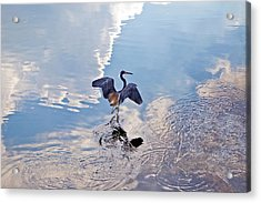 Walking On Water Acrylic Print