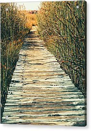 Acrylic Print featuring the photograph Walking Path by Alexey Stiop