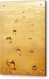 Walking The Dog Acrylic Print by Mal Bray