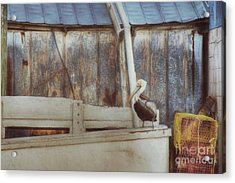 Acrylic Print featuring the photograph Walking The Plank by Benanne Stiens