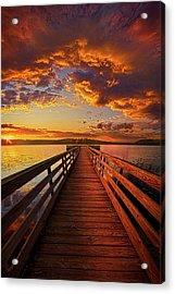 Walkyn Skywyrd Acrylic Print