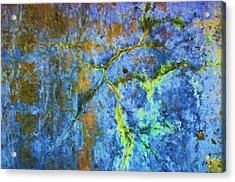 Wall Abstraction I Acrylic Print by Dave Gordon