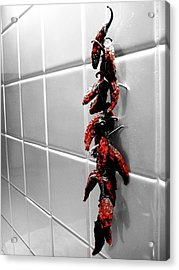 Wall Of Flame Acrylic Print by Toni Jackson