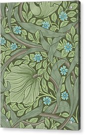 Wallpaper Sample With Forget-me-nots Acrylic Print