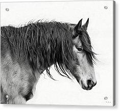 Wally Acrylic Print