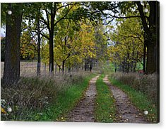 Walnut Lane Acrylic Print