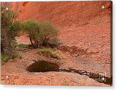Acrylic Print featuring the photograph Walpa Gorge 01 by Werner Padarin