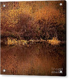 Acrylic Print featuring the photograph Warm Reflection by The Forests Edge Photography - Diane Sandoval