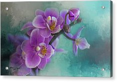 Acrylic Print featuring the photograph Warms The Heart by Marvin Spates