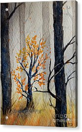Warmth In Winter Acrylic Print