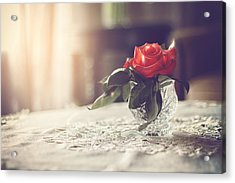 Warmth Of A Rose Acrylic Print by Marcin and Dawid Witukiewicz