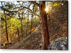 Warmth Of Comfort - Blowing Springs Trail In Bella Vista Arkansas Acrylic Print