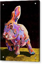 Acrylic Print featuring the painting Wary by Bob Coonts