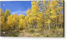 Wasatch Fall Acrylic Print by Chad Dutson