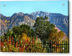 Wasatch Mountains In Autumn Acrylic Print