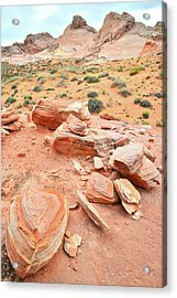 Acrylic Print featuring the photograph Wash 4 In Valley Of Fire by Ray Mathis