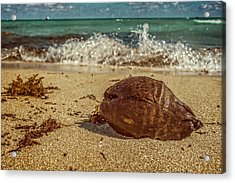 Acrylic Print featuring the photograph Wash Me Away by Melinda Ledsome